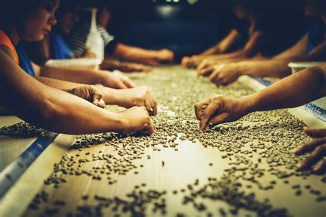 Mesin Pembuat Kopi mesin pembuat kopi alat pembuat kopi mesin kopi terbaru 2017