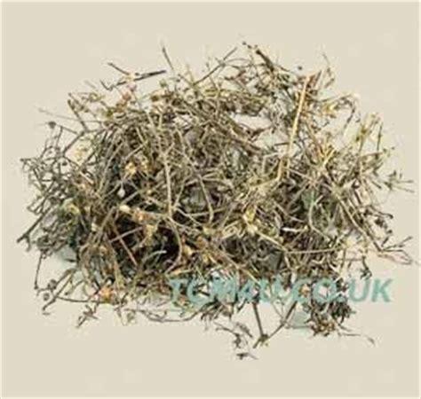 She Se Cao Beverage bai hua she she cao she she cao oldenlandia diffusa herb 100g for your wellbeing