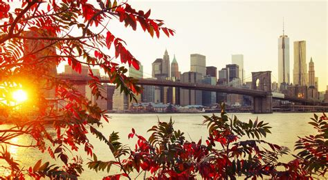 fall city  york city sunlight bridge leaves wallpapers hd desktop  mobile backgrounds