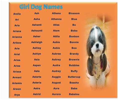 p names for dogs names a z list of names http www dogbreedplus dog names