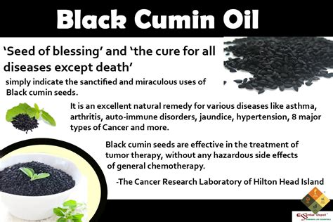 a cure for all disease except death baldness and hair loss therapeutic properties of black cumin essential oil