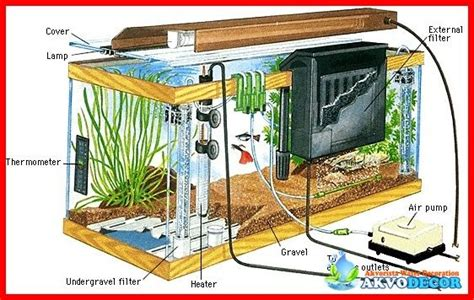 membuat aquascape air laut apa itu sistem filtrasi akuarium air laut akuarium dewasa