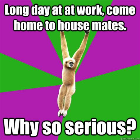 Long Day Memes - long day at at work come home to house mates why so