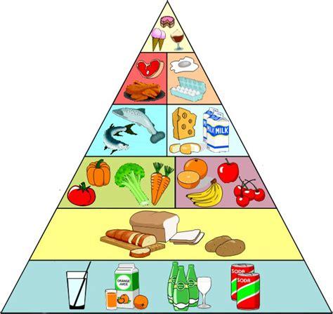 l alimentazione in alimentazione e sangue perch 233 232 importante nutrirsi