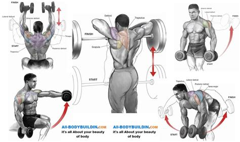 top 5 shoulder workouts for mass all bodybuilding