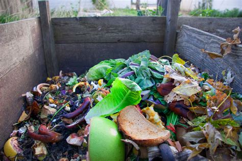 backyard composting images rethink recycling