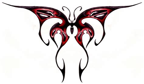 cool butterfly drawings clipart best