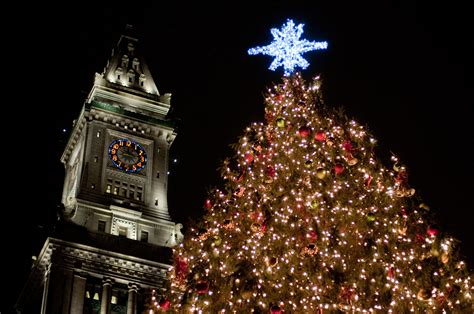 buying a christmas tree in boston america s best trees huffpost
