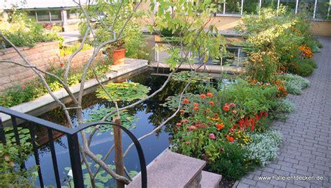 Botanischen Garten by Botanischer Garten In Halle Saale Www Halle Entdecken De