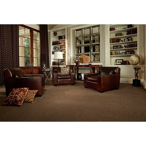 Living Room Ideas With Light Brown Carpet 1000 Images About Living Room On Light Walls