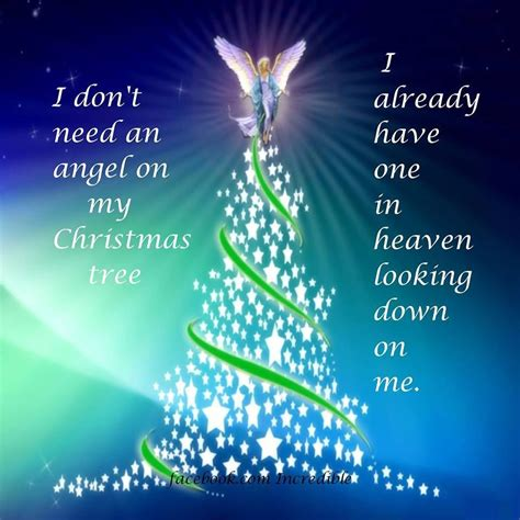 dont   angel   tree         pictures