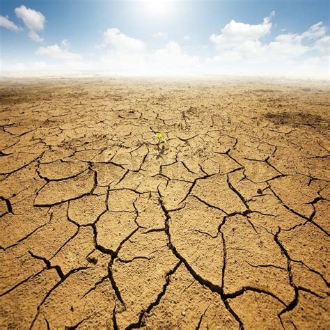 desert ground dryed land with cracked ground desert stock photo