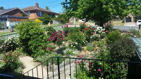 Open Garden by Melssen Garden Open Gardens Canberra