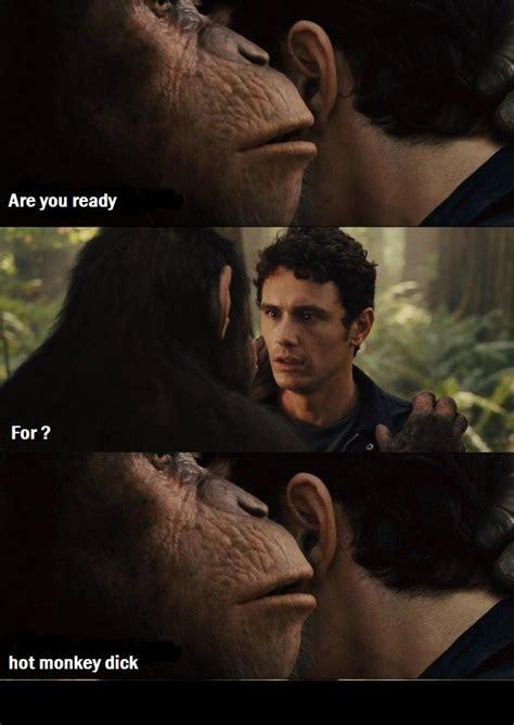 Sexy Monkey Meme - hot monkey dick hot monkey dick know your meme
