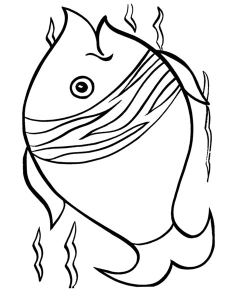 fish coloring page pdf tropical fish coloring pages clipart panda free