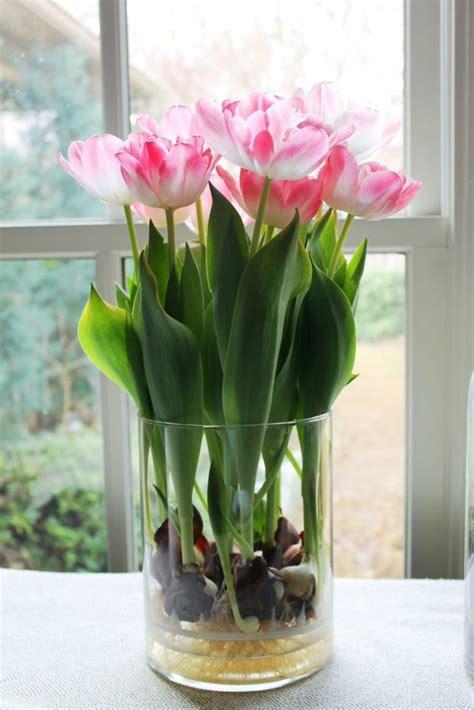 tulpen im glas fr 252 hlingsblumen 100 faszinierende bilder archzine net