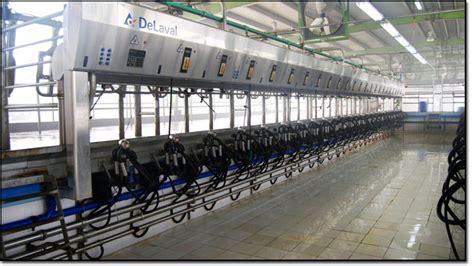 umer farms umer group  companies