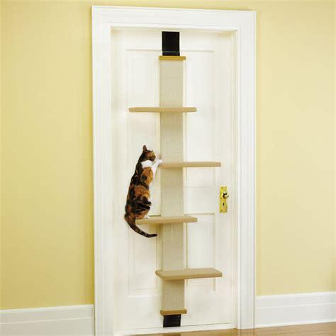 Cat Climber For Door the door cat climber the green