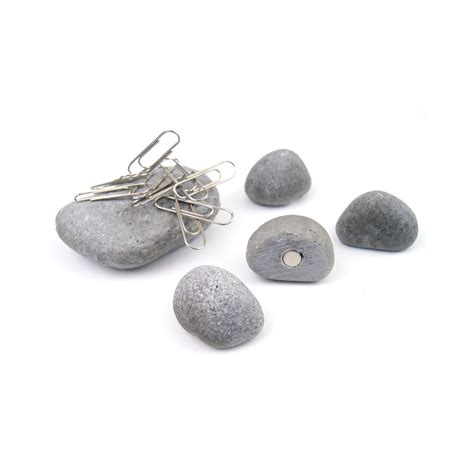 Assortment Of Four Magnets assorted decorative office magnets pebbles from