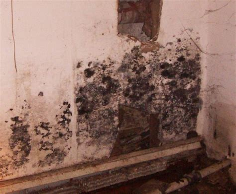 37 best home inspection defects images on pinterest