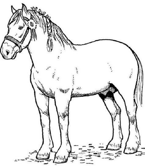coloriage cheval de trait