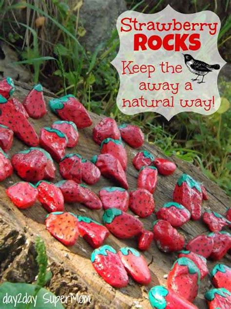 Backyard Decorations by 26 Fabulous Garden Decorating Ideas With Rocks And Stones