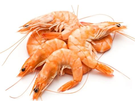 Shelf Of Shrimp by Whole Foods The Nutritional Benefits Of Prawns Shape Me By Susie Burrell