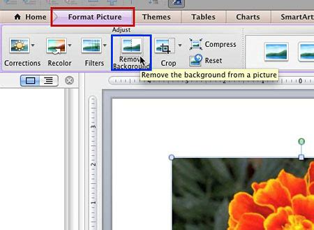 how to remove the background of a picture in photoshop powerpoint tips how to use the remove background option