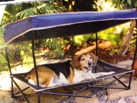 dog bed with canopy synthetic rattan dog bed with canopy buy canopy beds for