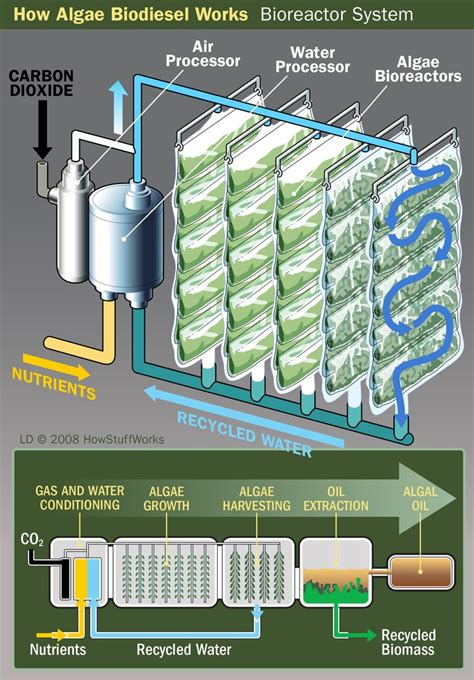 17 best ideas about biomass energy on
