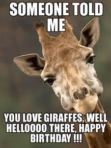 Giraffe Birthday Meme - sarcastic giraffe someone told me you love giraffes