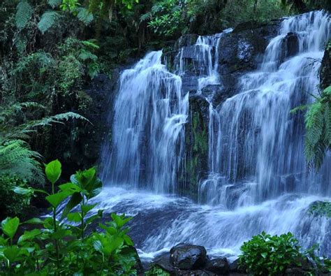 imágenes de paisajes muy bonitos paisajes naturales flores silvestres fondos pantalla zen