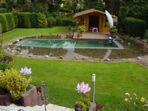 Ponds In Backyard Schwimmteich Bei Hannover Mielke S Schwimmteiche