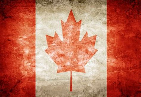 Can I Get Into Canada With A Criminal Record Deaths In Canada 1995 To 2015 Eleanor Funk Calgary Criminal Lawyer