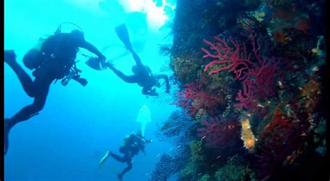 banco di santa croce vico equense banco santa croce new regulation for diving