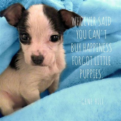 puppy sayings the earth day spirit with these colors of the wind quote