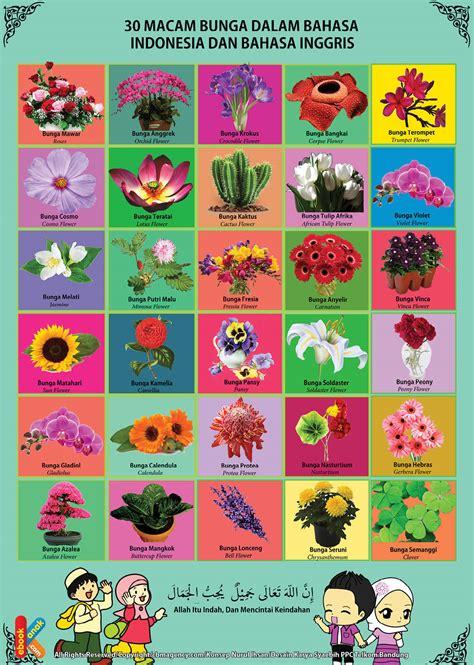 poster belajar mengenal 30 bunga 2 bahasa ebook anak