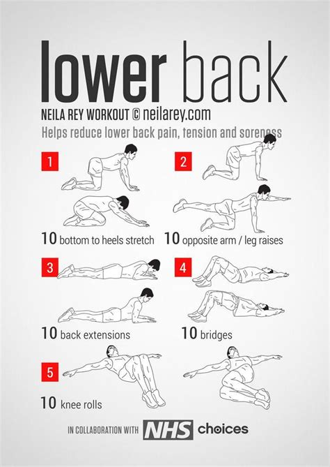 fitnesshacks101 on at home lower back exercises fitness exercise