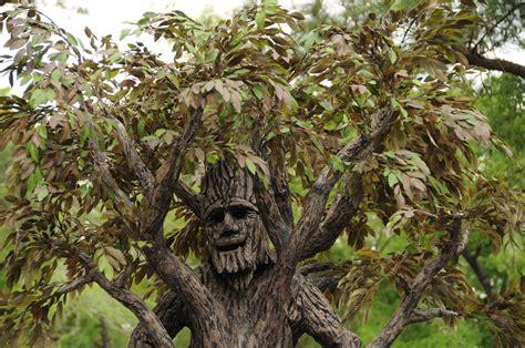 a living tree the living tree mzungu