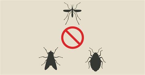 come eliminare le zanzare tigre dal giardino parete scorrevole vetro idee di architettura d interni e