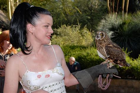 does pauley perrette have tattoos 137 best images about power pauley perrette on