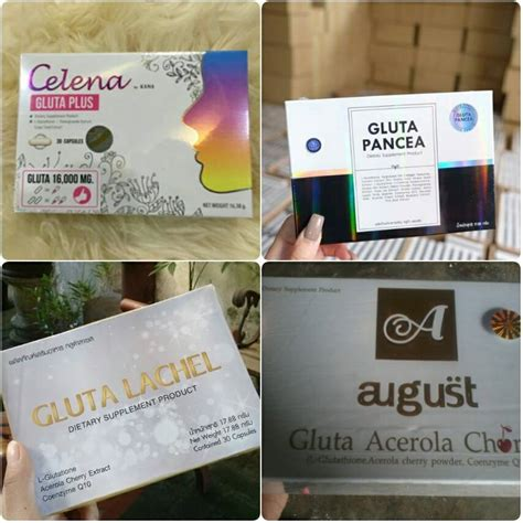Bibit Collagen Mecca Anugrah bibit collagen cv mecca anugrah 0896 7808 1911