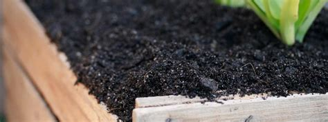 how to compost in your backyard how to make compost in your own backyard circle maintenance