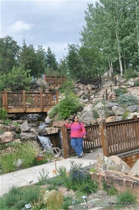 Betty Ford Alpine Gardens by Cascading Waterfalls At The Alpine Gardens Picture Of