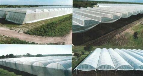 greenhouses in florida listed for sale florida greenhouse pepper farm