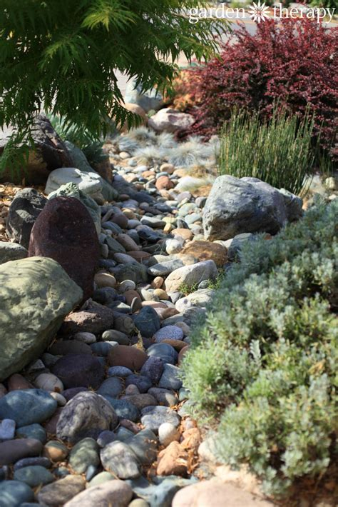 dry river bed landscape landscaping for drought inspiring gardens that save water