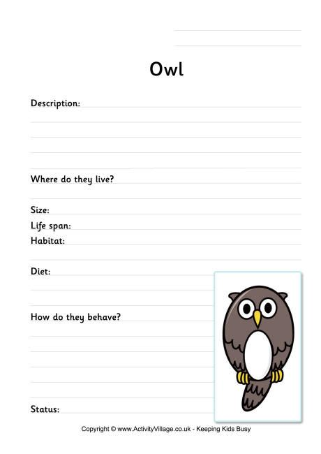 printable owl worksheets owl worksheet