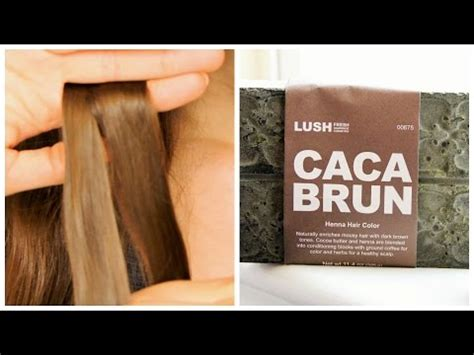 tutorial lush cosmetics henna hair dye caca brun youtube lush s henna hair dye tutorial review doovi