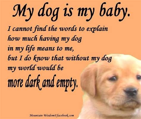 my puppy my is my best friend quotes quotesta