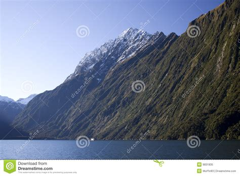 cartoon boat sound cruise at milford sound royalty free stock image